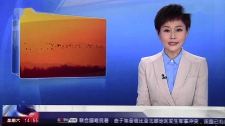黑豹野保站CCTV新闻 候鸟迁徙高峰.mov