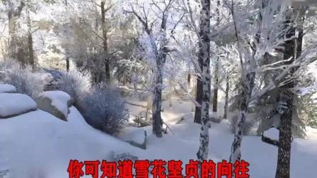 我像雪花天上来 张敦平歌曲_01