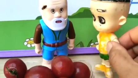 葫芦娃爷爷卖圣女果,大头吃了发现好吃,要让围裙妈妈买