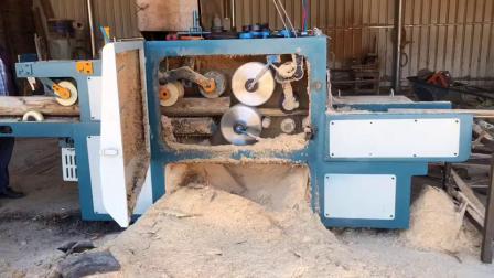 原木多片锯 方木多片锯 清边机 木材多片锯 机械 正启机械厂