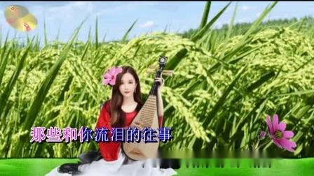 歌曲﹕我有一颗《稻草心》紫罗兰琴影音mp4