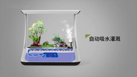 新中式生态篮植物篮