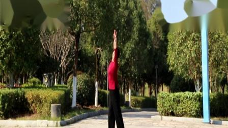 舞蹈:弥渡山歌(广场舞)