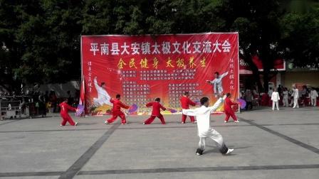 26-陈式太极剑-梧州市常乐队-3.36