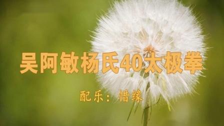 吴阿敏杨氏40式太极拳(天边)