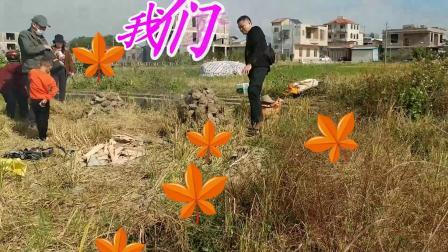 玉林番薯节_人海难得一知己_周文拍摄2020-11-28