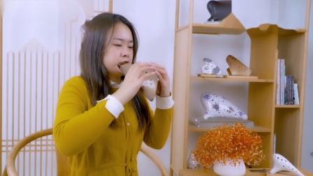 陶视频——《春江花月夜》.马会博演奏