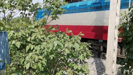 20200424 110143 阳安线客车K291次列车通过王家坎站