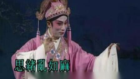 牡丹亭之再生奇缘(梁耀安、蒋文端)主演字幕走字版