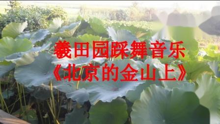 羲田园踩舞音乐《北京的金山上》