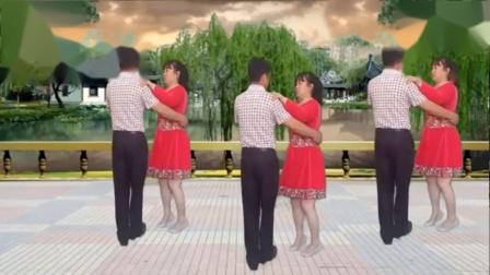 双人舞浪漫情歌14步歌曲感人 简单好学 - 西瓜视频1