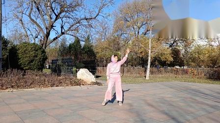 宜人悦舞健身队广场舞《可可托海的牧羊人》演绎阿华