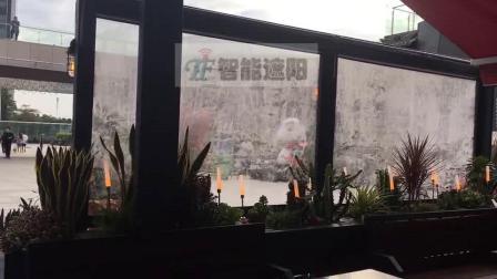 维尼集市酒吧拉链式电动防风卷帘