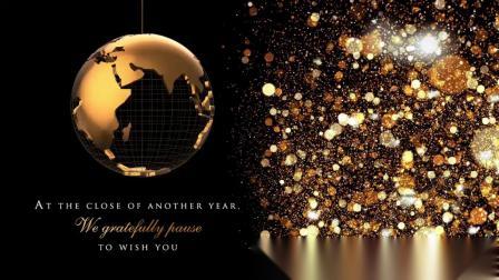 2020 SIRVA Season Greetings 欢庆圣诞