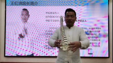 王红锦--产后修复之遗尿漏尿、缩阴、骨盆矫正