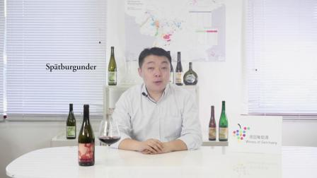 第2集-雷司令与黑比诺,德国葡萄酒梦之队