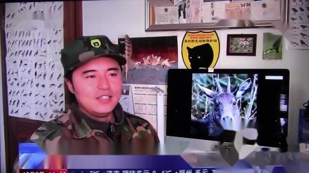 黑豹野保站 CCTV新闻直播间 斑羚.mov