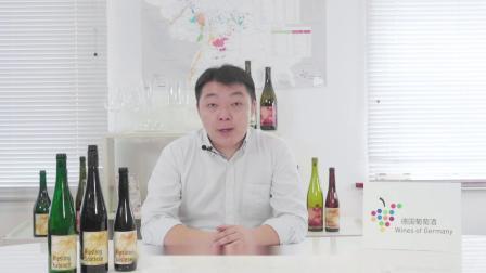 第5集-德国葡萄酒法规详解