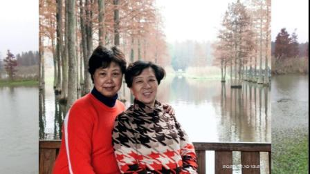 上海青西郊野公园一游20201210