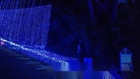 2020日本相模湖冬季灯光艺术节 Sagamiko