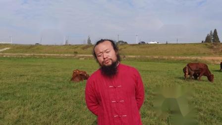 中国湖南长沙风水大师无量子2021年辛丑牛年祝福语大全