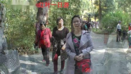 北京香山看红叶一日游-陈利红20141018