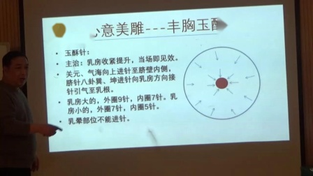 中医针灸美容-刘涛心意美雕-丰胸针法理论讲解视频