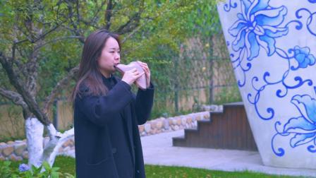 陶视频——《琵琶语》,演奏马会博
