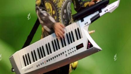 野蜂飞舞 手持自动伴奏器加罗兰电子琴合成器背挎双排键