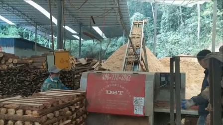 12立式小原木分片机圆木多片锯木糠流水线