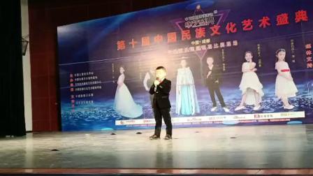 2020第十届中华民族文化艺术盛典曼音朗域声乐陈宜宗《宁夏》