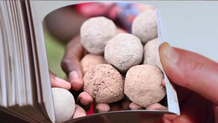 "2020 GGAA Creating Impact – UON -  ""Germinate – May Contain Seeds"""