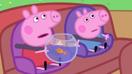 听到公牛先生修路,不能及时赶到兽医哪里,金金不是很开心