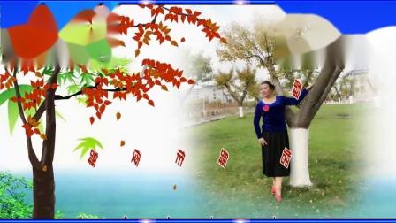 新月恬静广场舞《红枣树》372
