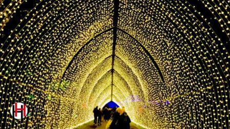 夜游2020 英国皇家植物园 Kew Garden 圣诞照明艺术节