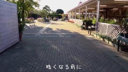 Real Demon Slayer holy place of wisteria 480p