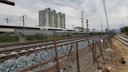 20200601 192839 西成高铁D1944次列车出汉中站