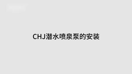 CHJ系列潜水喷泉泵介绍整合