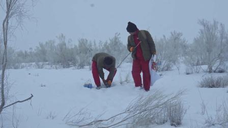 SmartSolo地震勘探设备在塔里木盆地开展油气勘探项目,堪称找油先锋~给地球做CT(英文版)