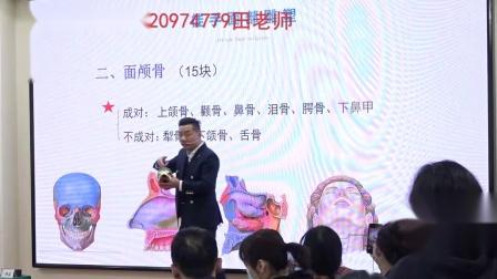 王红锦-徒手整形之面部骨骼认识