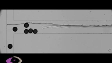 高速摄像机在微流控方面的应用样片