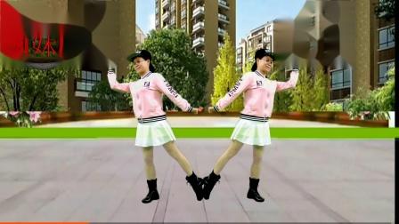 2020龙川思念广场舞个人版演示:问自己