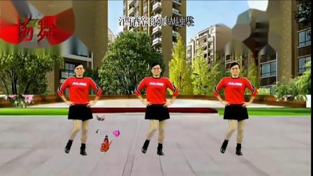2020龙川思念广场舞个人版演示:酒醉的蝴蝶