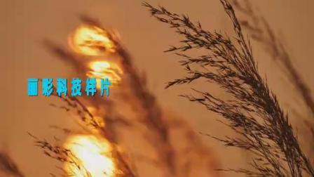 lc388芦苇荡夕阳湖面风景吉他民谣红歌游击队话剧配乐成品led大屏幕背景视频素材