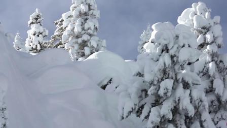 极限变速运动滑雪