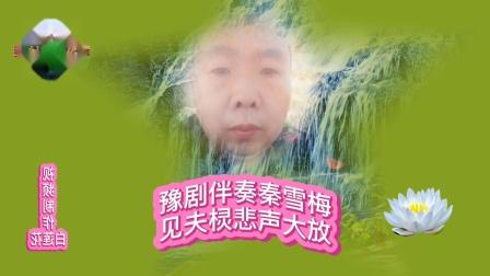 2020年12月31日演唱豫剧伴奏秦雪梅见夫灵悲声大放