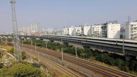 VID_20201220_125821广雅大桥拍车-南宁东北京西-G530