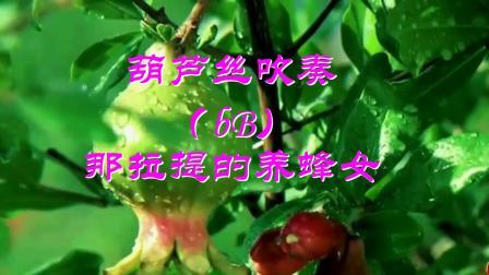 88.葫芦丝吹奏《那拉提的养蜂女》bB