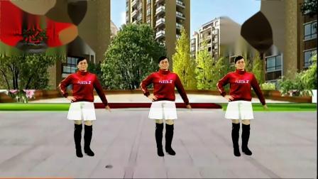 2021龙川思念广场舞个人版演示:为何抛弃我