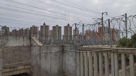 20200614 170439 西成高铁G90次列车高速通过汉中站